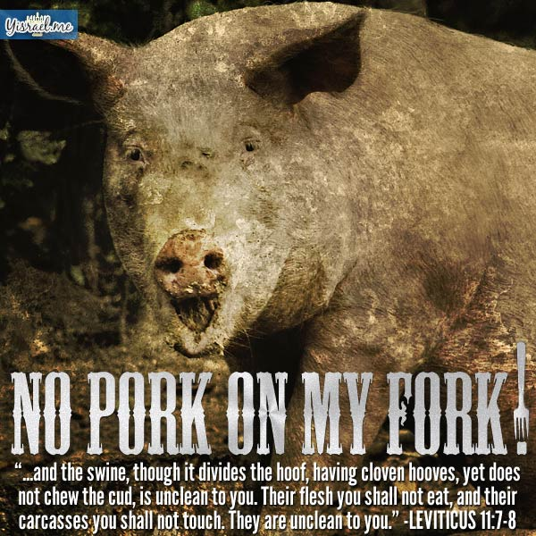 no-pork-on-fork